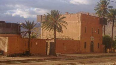صورة النعامة: سكان بلدیتي مغرار و جنین بورزق یطالبون بفتح محطة القطار