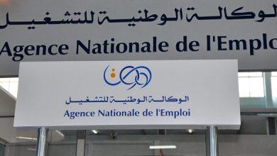 صورة تكليف الوكالة الوطنية للتشغيل بتسيير ملف منحة البطالة