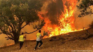 صورة 47 متهما فـي حرائق الغابات رهن الحبس المؤقت